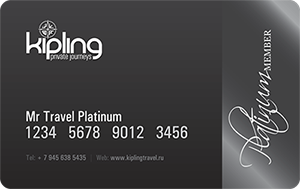 Member card Platinum-1