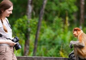 Натуралист на Борнео