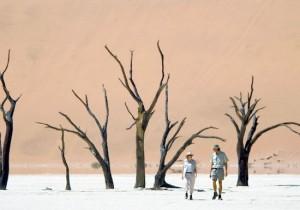 В песках Намибии