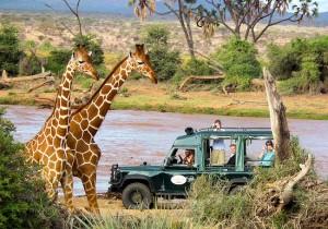 Зимбабве_тур