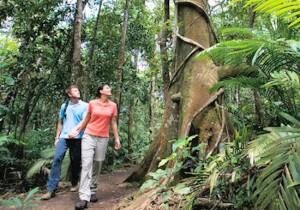 Тропический рай и вулканы