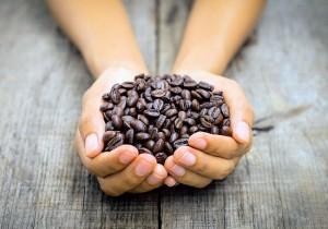 Колумбия: города и кофе