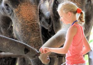 Семейный отдых в Тайланде