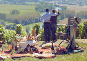 К виноградникам Шампани