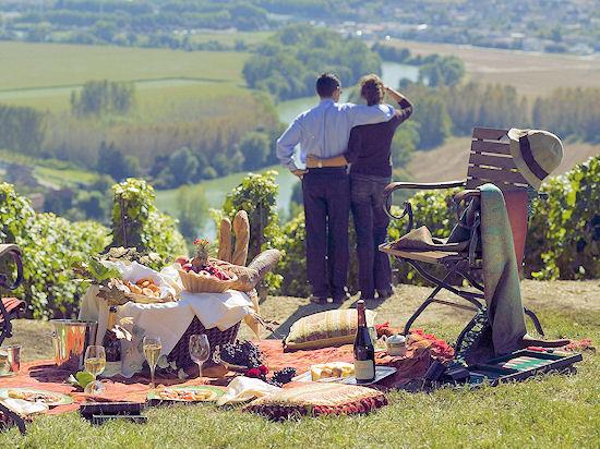 К виноградникам Шампани_13