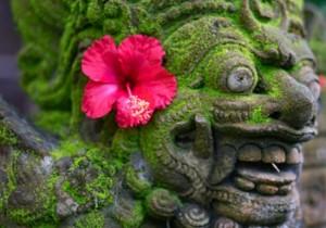 Отдых на Бали <br /> (Базовый тур 1)