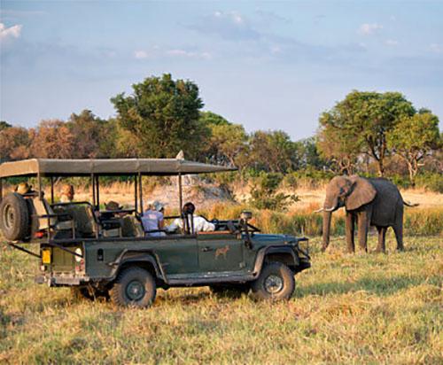 Большое путешествие по Африке