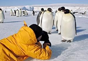 Антарктида экспресс <br /> (Тур в мини-группе) <br />8 дней/7 ночей