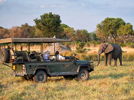 Большое путешествие по Африке9